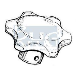 BOUTON CHAUFFAGE -64 ET T2-67 ivoire